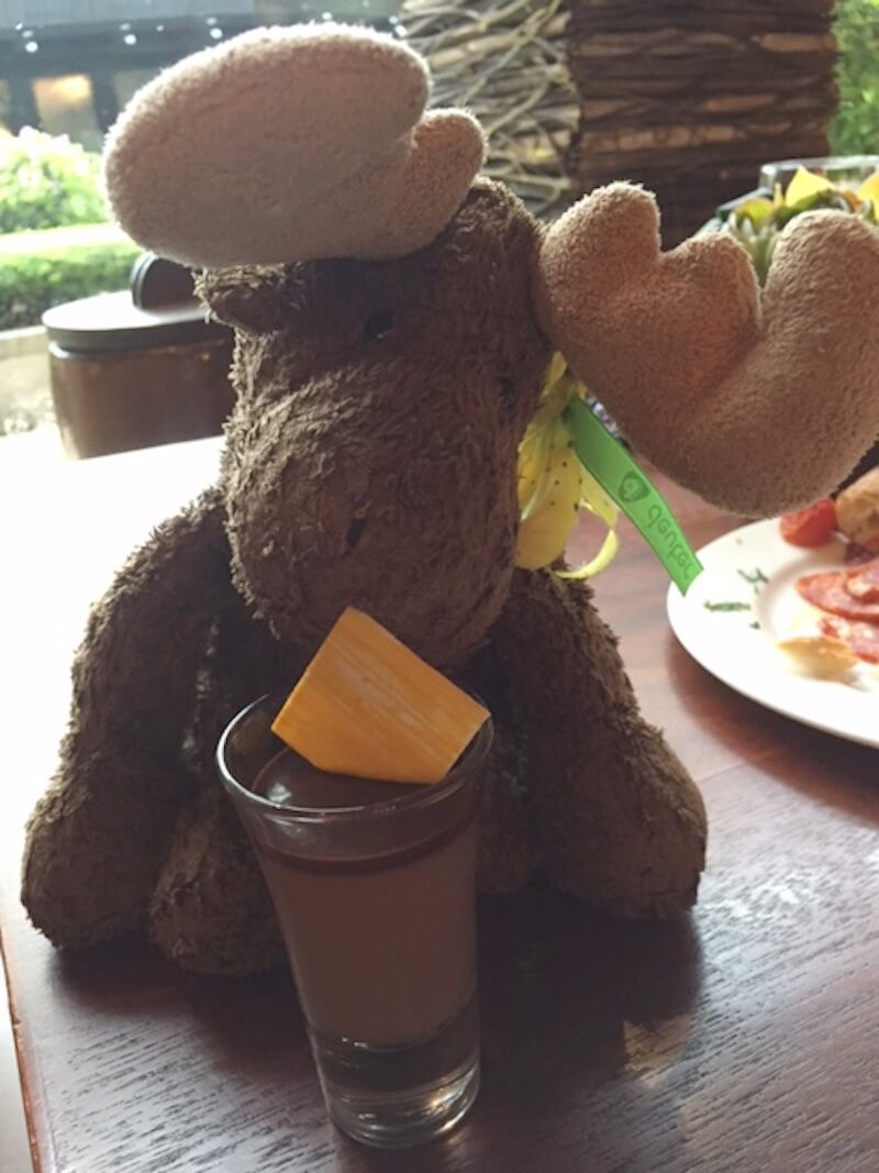 My stuffed moose, Abile with Chocolate Panna Cotta via @DishOurTown